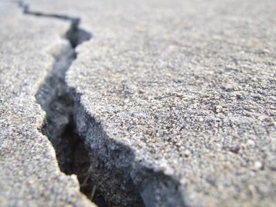 Is Your Tree Causing Sidewalk Damage in Marysville?